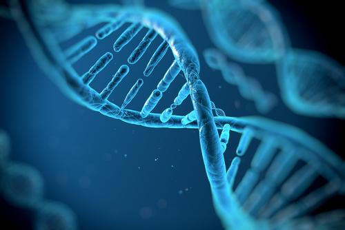 neuron, analysism life, sciences, pharmaceutical, clinical, bio,